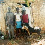 goatfamily #3004